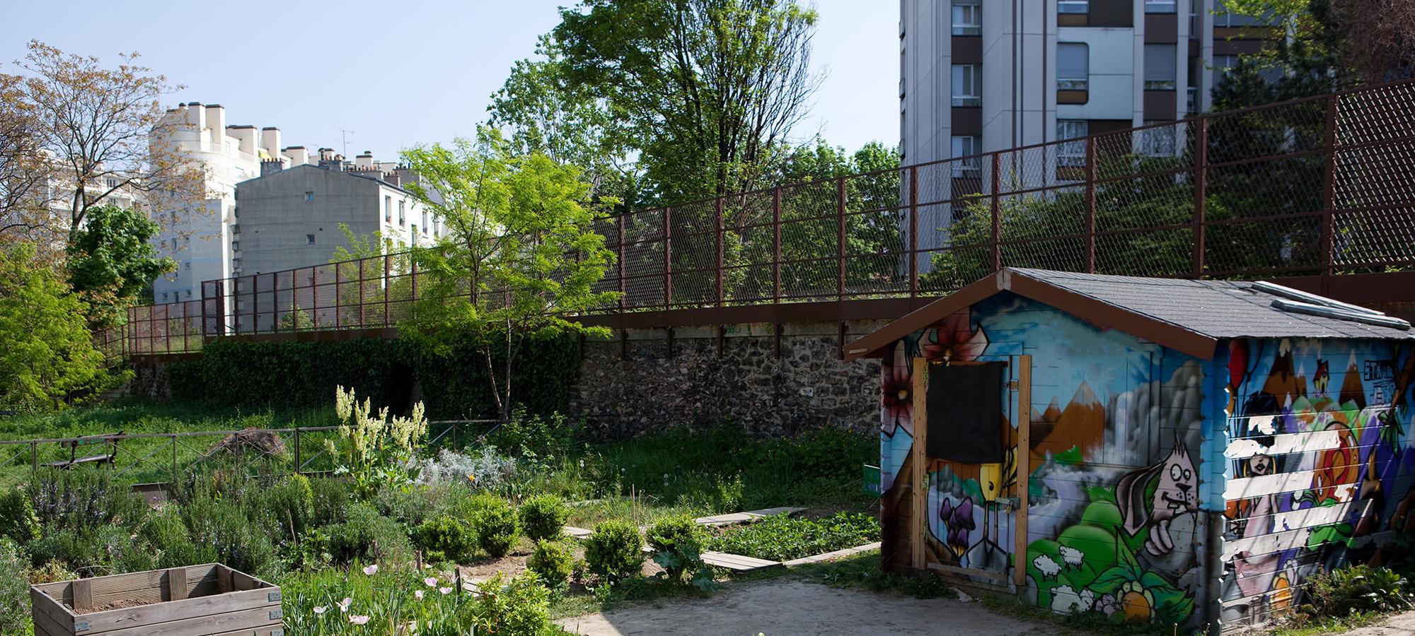 Community garden cropped